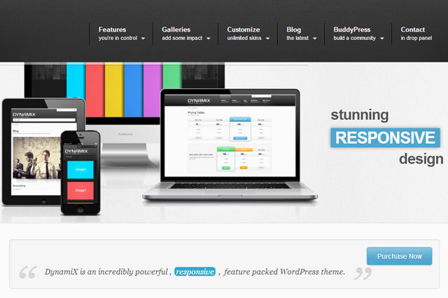5 Beautiful Paid WordPress Themes For Your Website
