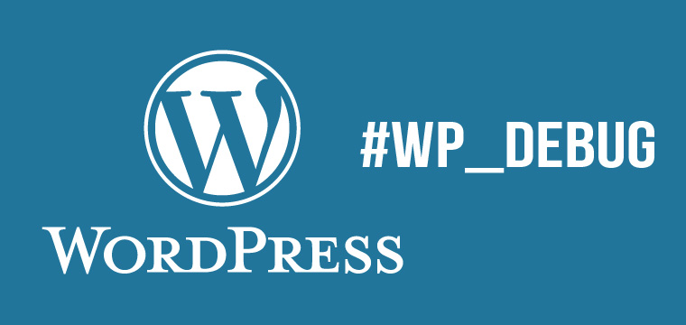 How and Why You Should Use WP_DEBUG in Your WordPress Website