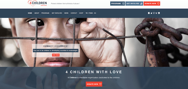 NGO WordPress Themes