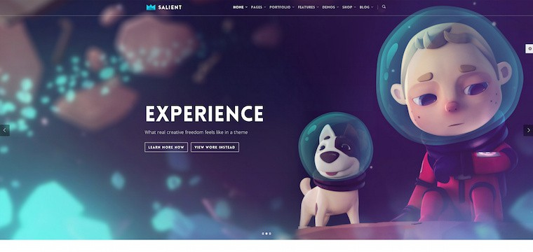 25 Best Selling Premium Portfolio WordPress Themes